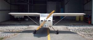 Wittman Tailwind W8 front