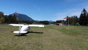 Packwood runway 01 windsock